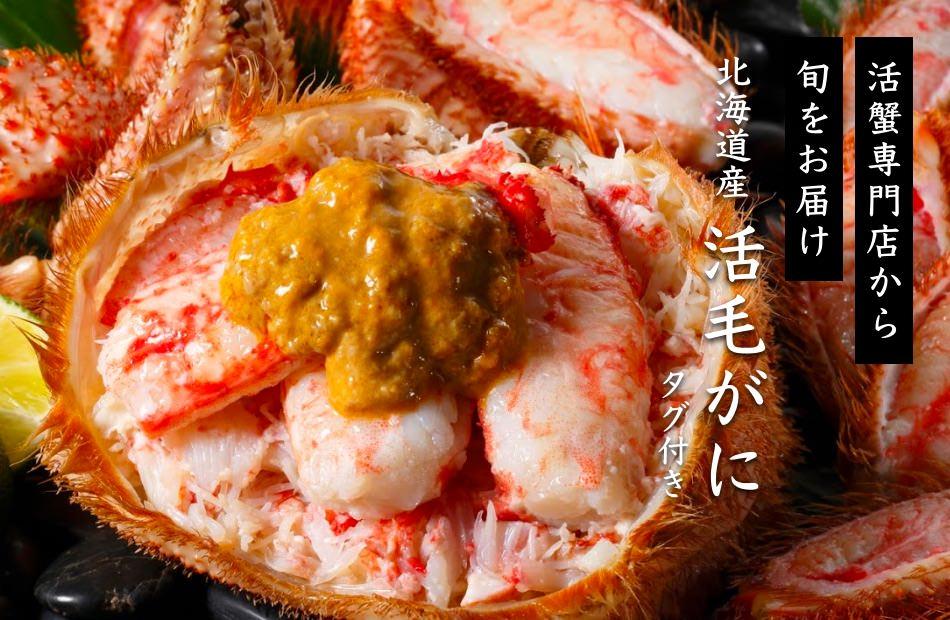 活蟹専門店から旬をお届け「北海道産、活毛がにタグ付き」