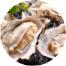 牡蠣・あさり・貝類